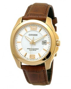 Citizen Gents Perpetual Calendar Eco-Drive Watch BL1243-00A