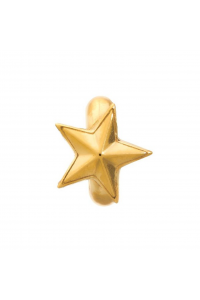 Endless Gold Plated Sterling Silver JLO 'Rising Star' Bead 1525