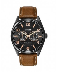Citizen Gents Eco-Drive Watch AO9025-05E
