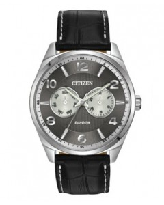 Citizen Gents Eco-Drive Watch AO9020-17H