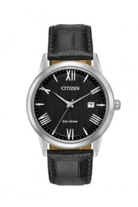 Citizen Gents Eco-Drive Watch AW1231-07E